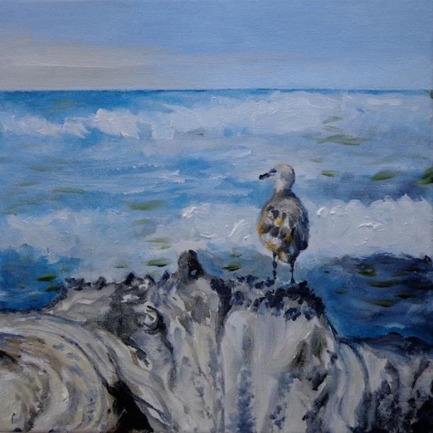 23 Gull on a tree stump at Rialto Beach_Whacha looking' at boid?