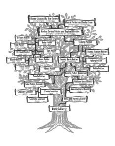 The family tree from the book.