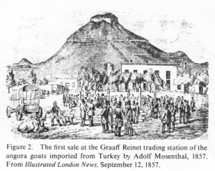Encyclopaedia Judaica (1971): Jews in South Africa, vol. 15, col. 187: The first sale at the Graaff Reinet trading station of the angora goats imported from Turkey by Adolf Mosenthal, 1857. From: Illustrated London News, September 12, 1857. (Rtrvd. 2016-06-18)