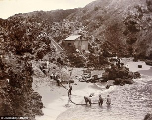 This picture shows cables being laid for a top-secret telegraph station at a cable being landed on Ascension Island, not Porthcurno - as was reported in local media. Oh well, it could've happened like that in Porthcurno, I suppose. (Image: Jon Gliddon/BNPS)