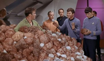 Too many tribbles! And Dr. McCoy wants to dissect them.